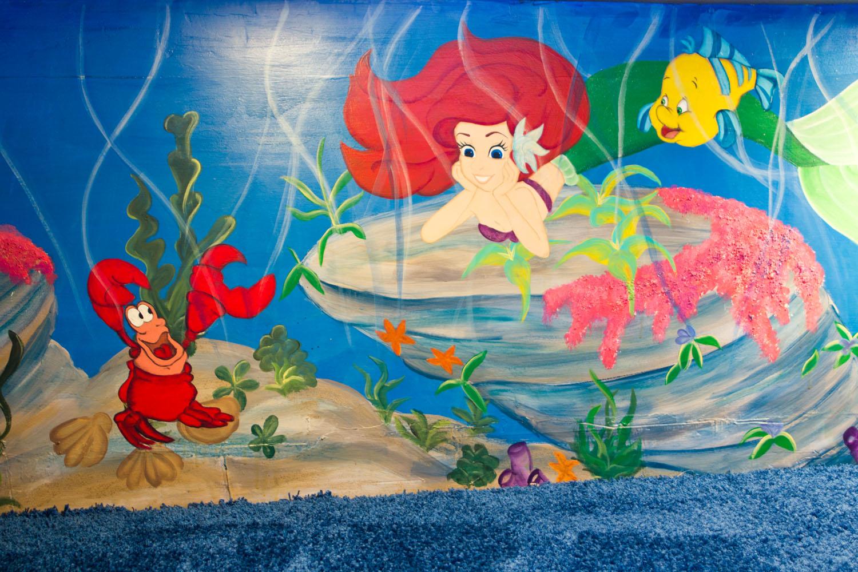 Peter Pan Wall Murals Cassidy Tuttle Graphy Part 86